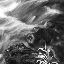 Little Plant II - Jon Glaser