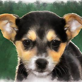 Sergey Lukashin - Little puppy
