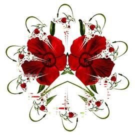 Nancy Pauling - Little Red Flowers