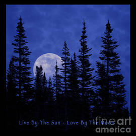 John Stephens - Live By The Sun Love By The Moon