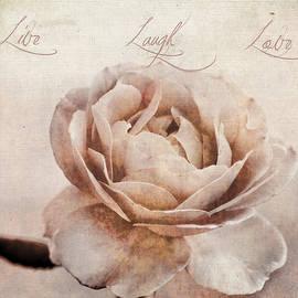 Darren Fisher - Live Laugh Love