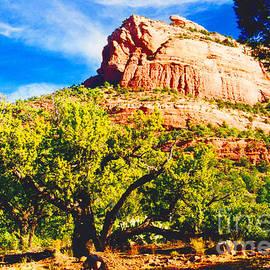 Jerome Stumphauzer - Lizard Head Rock Sedona Arizona