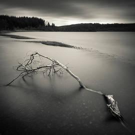 Dave Bowman - Loch Avich Branch