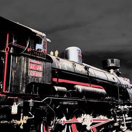 Damijana Cermelj - Locomotive