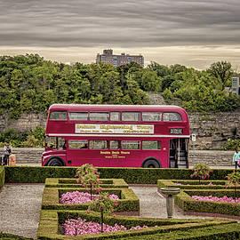 London Bus - Martin Newman