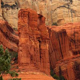James Peterson - Long Canyon Trail