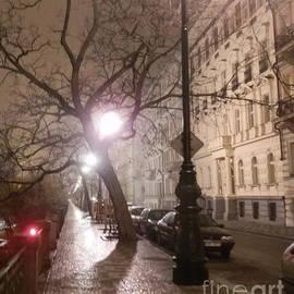 Margaret Brooks - Long cobblestone street of Prague