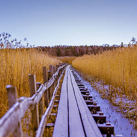 Leif Sohlman - Long way