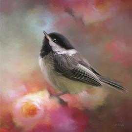 Jordan Blackstone - Look Up Above - Bird Art