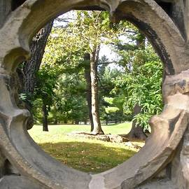 Stephanie Moore - Looking through the Ruins