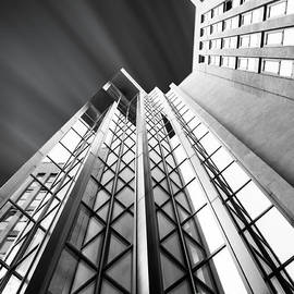Stefano Senise - Looking Up