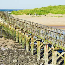 Lossiemouth beach - Tom Gowanlock