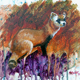 Marcus Moller - Lost Black-footed Ferret