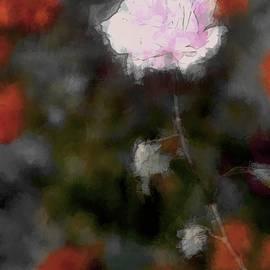 The Art Of Marilyn Ridoutt-Greene - Lost in Love