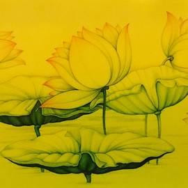 Devendra - Lotus