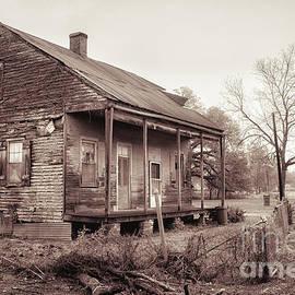 Kathleen K Parker - Louisiana House on River Road