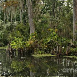 Steven Parker - Louisiana Scenery