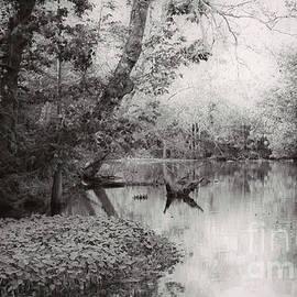 Kathleen K Parker - Louisiana Swamp - Vintage BW