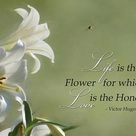 Lori Deiter - Love is the Honey