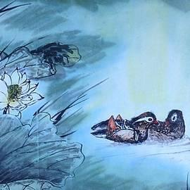 Renee Giegoldt - Lovely mandarin duck