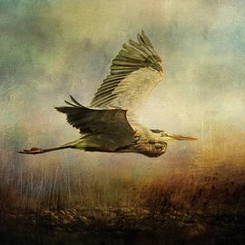 Jai Johnson - Low Flyer Ocean Bird Art