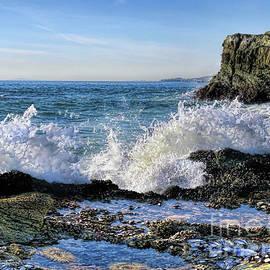Jennie Breeze - Low Tide Table Rock.Laguna Beach
