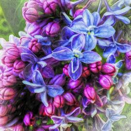 Jo-Anne Gazo-McKim - Luminescent Lilacs