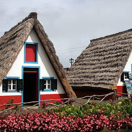 Laurel Talabere - Madeirense Homes