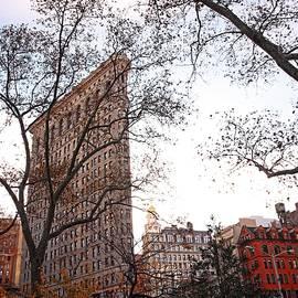 Nick Difi - Madison Square Park