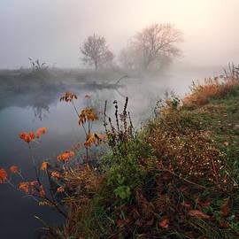 Stanislav Salamanov - Magic autumn morning