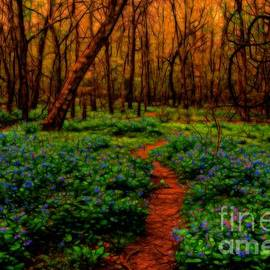 Kathy Liebrum Bailey - Magical Forest