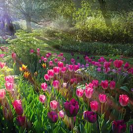 Lynn Bauer - Magical Moment in the Garden