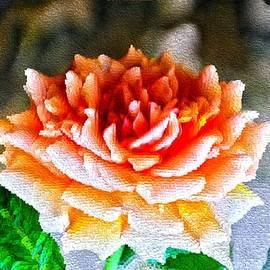 Sonali Gangane - Magical Rose