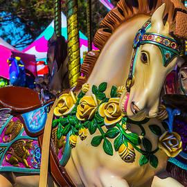 Magical Wild Carrousel Horse - Garry Gay