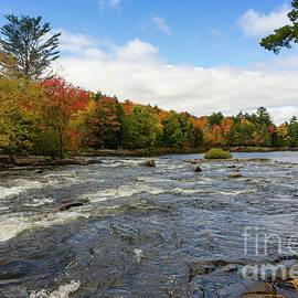 Les Palenik - Magnetawan River In Fall