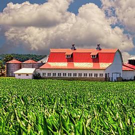 William Sturgell - Magnificent Barn in the Corn