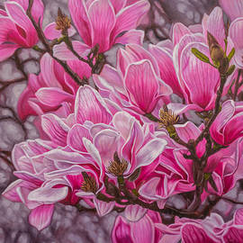 Fiona Craig - Magnolias 1