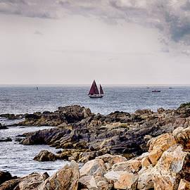 Tricia Marchlik - Maine Sailing