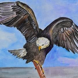 Linda Brody - Majestic Eagle