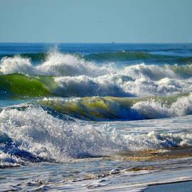 Dianne Cowen - Majestic Sea