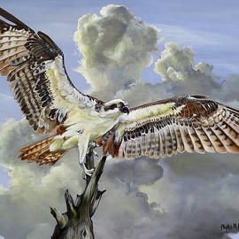 Phyllis Beiser - Majestic Sea Hawk