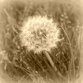 Trude Janssen - Make a Wish...