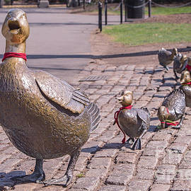 Jerry Fornarotto - Make Way for the Ducklings