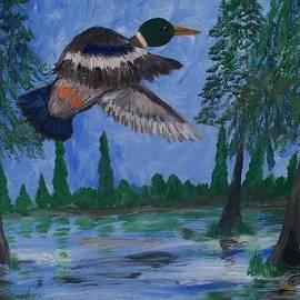 Seaux-N-Seau Soileau - Mallard Over Swamp