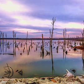Geraldine Scull - Manasquan sunrise
