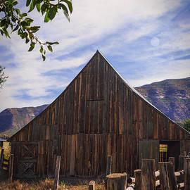 Janice Rae Pariza - Mancos Colorado Wooden Barn