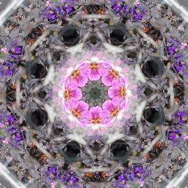 Brenda  Spittle - Mandala 3