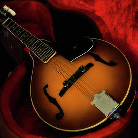 Kevin Chippindall - Mandolin guitar 66661