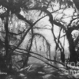 Mary Lynne Powers - Mangroves by Moonlight
