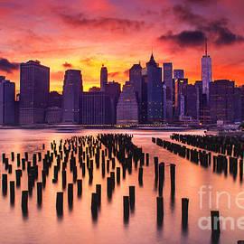 Rima Biswas - Manhattan Sunset
